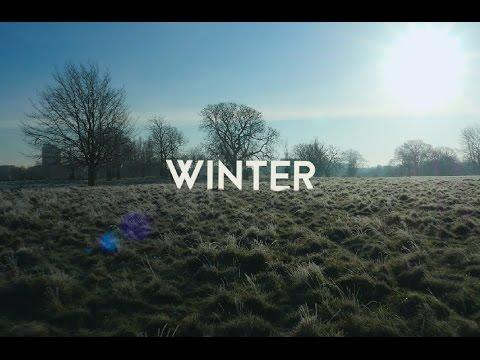 Hampton Court Palace Gardens: Winter
