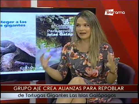 Grupo AJE crea alianzas para repoblar de tortugas gigantes Las Islas Galápagos