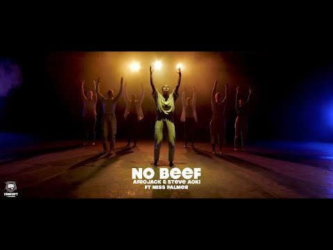 No Beef - Afrojack & Steve Aoki ft Miss Palmer