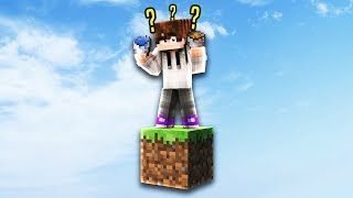 PLAYING MINECRAFT SKYBLOCK WITH 1 BLOCK!