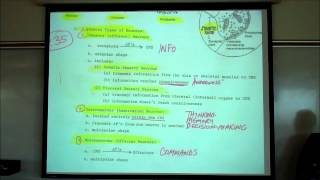Organization Of The Nervous System; The CNS&PNS By Professor Fink