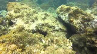 Marinella Italy  city photos gallery : Snorkeling in Santa Marinella, Italy - GoPro