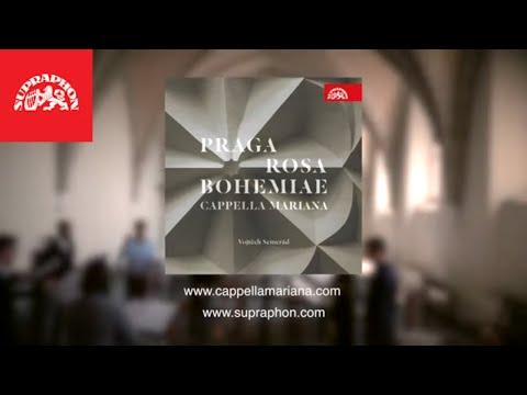 Supraphon vydává hudební lahůdku:  Cappella Mariana nazpívala hudbu renesanční Prahy