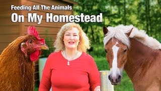 10. Watch me feed all the funny animals on my small homestead.