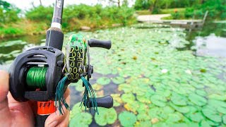 Video Fishing for BIG Bass in PADS!!! MP3, 3GP, MP4, WEBM, AVI, FLV Agustus 2018