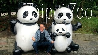 A trip to the Taipei Zoo. It,s got pandas and koalas. Great place!Music provided by Free Songs To UseRead about it here :https://shybackpack.wordpress.com/2017/03/15/a-worth-it-and-not-worth-it-day-trip-from-taipei-taiwan/