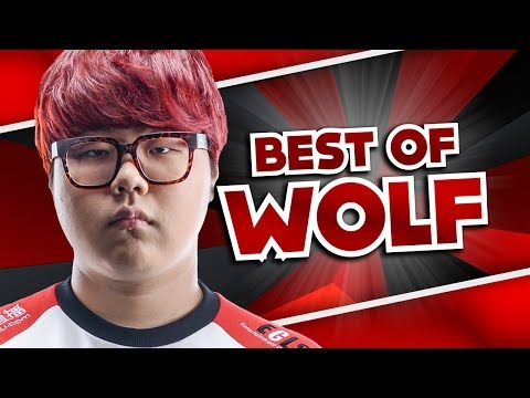 Best Of Wolf - Best Support World | League Of Legends