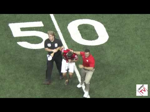 Anthony Schlegel Tackles Fan on Field
