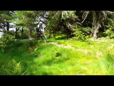 Glentress Spooky Woods