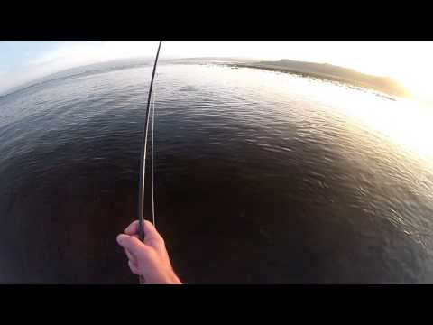 FLY FISHING FOR (SEA) BASS BY SIGHT – IRELAND