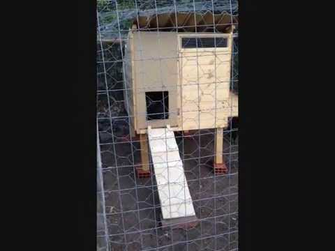 Costruire una casetta per galline