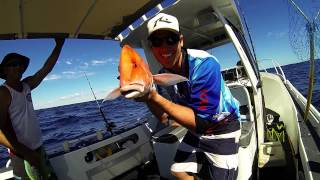 Coral Bay Australia  city pictures gallery : Go Pro HD | Coral Bay, Western Australia 2015