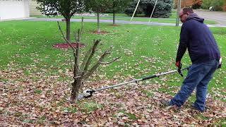 2. Echo Pas-2620 and Power Pruner Attachment