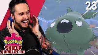 FOUND MY CHANNEL LOL | Pokemon Shield Quadlocke Part 23 by Ace Trainer Liam