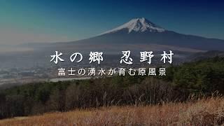 水の郷 忍野村 〜富士の湧水が育む原風景〜