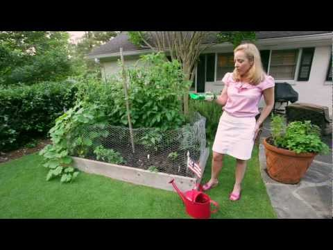 Gardenieres: Southern Style Vegetable Gardening
