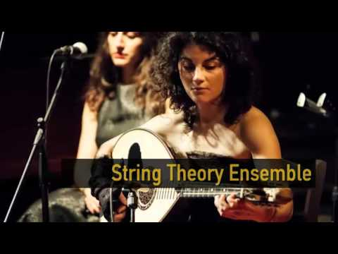String Theory Ensemble [Trailer]