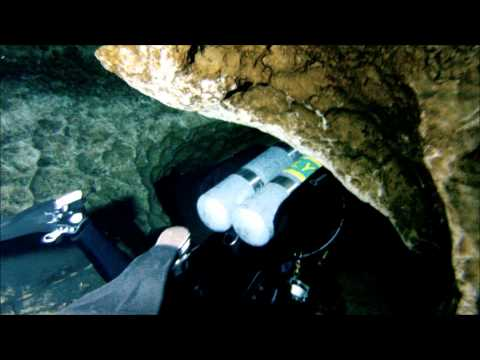 Cave Diving in Little River Springs