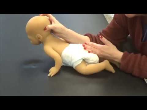 Helping Your Baby Crawl - Baby Basics - Movement Lesson™