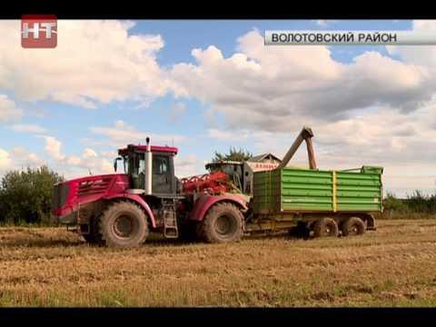 Новгородская область занимает 11 место в стране по индексу производства продукции сельского хозяйства