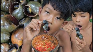 Primitive Technology - Find and cooking snail in forest - eating delicious