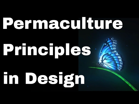 Permaculture Principles of Ecological Design, Whole Systems Thinking