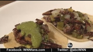 Insect Cuisine Could Become Future Food Staple