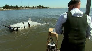 Catch the premiere of SHARK WEEK 2012 Sunday, August 12, 2012 at 9PM e/p on Discovery.  http://dsc.discovery.com/tv/shark-week/#mkcpgn=ytdsc1  Jamie ...