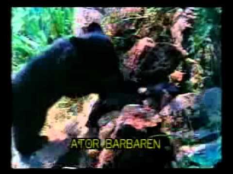 Elokuva: Ator - taisteleva kotka