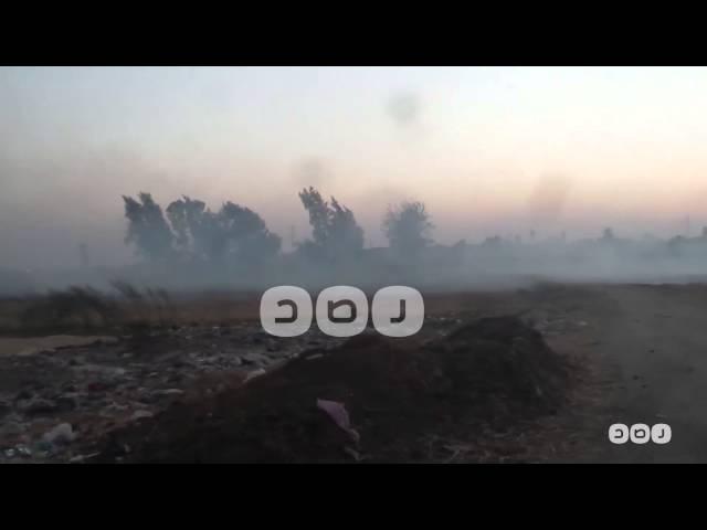 موسم حرق قش الأرز يبدأ من محافظة الشرقية وسط تجاهل وزارة البيئة والمحافظة والمتضرر الوحيد المواطن