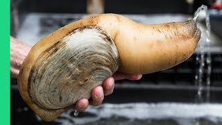 Video Exotic CHINESE FOOD Feast in Guangzhou! $250 Snake, Geoduck Sashimi and Sea Cucumber! MP3, 3GP, MP4, WEBM, AVI, FLV Juli 2019