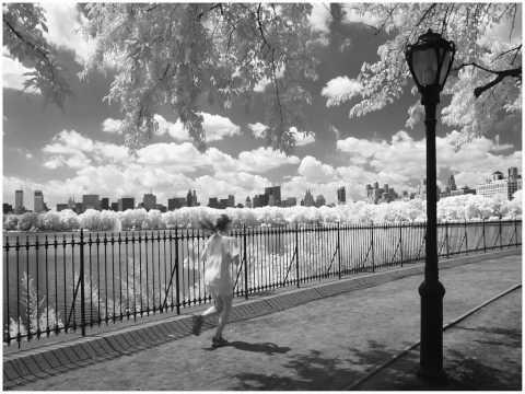 new york IR black white photos