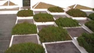 #29 Der Garten wird kubisch-kubistisch (Südfrankreich)