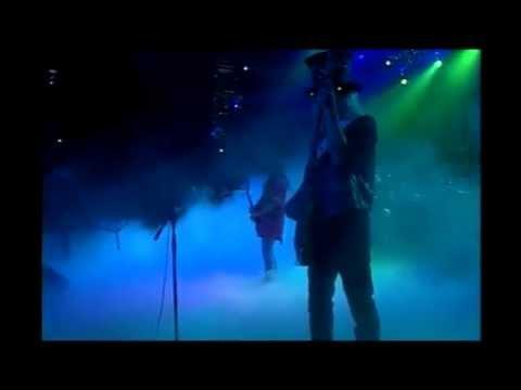 Lynyrd Skynyrd - Voodoo Lake (Lyve From Steel Town)