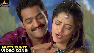Nuvvu Muttukunte Song - Yamadonga Movie (Jr.NTR, Priyamani, Mamtha Mohandas)