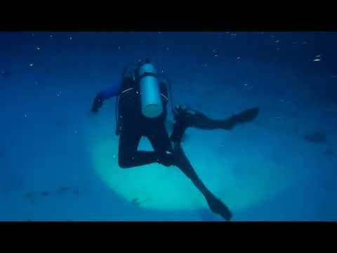 Buceando con tiburones en Maldivas