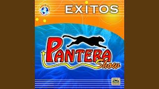 Provided to YouTube by Believe SAS El Viudo Negro · Pantera Show El Viudo Negro ℗ Producciones De La Costa Released on: 2007-01-16 Author: Sigfrido Bedolla C...