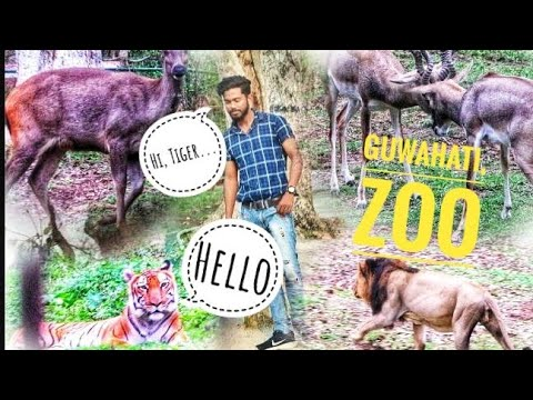 #ZooGuwahati. Vlog|| Animals||Birds🐦|| Raj Das.