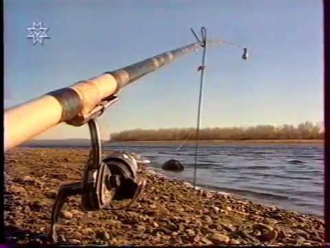 как ловить леща на пенопласт на реке