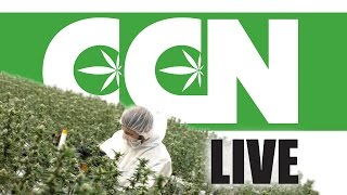 Cannabis Culture News LIVE: Marijuana Task Force or Task Farce? by Pot TV