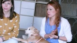 Debutando como presentadora de Enfoke Animal