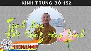 Kinh Trung Bộ 152 (Kinh Căn Tu Tập) - Tinh hoa đời sống tâm linh (29/11/2009) - Thích Nhật Từ