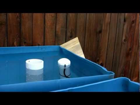Backyard Aquaponics: Initial Setup