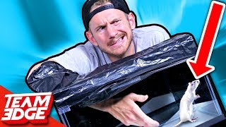 What's In The Box Challenge!!
