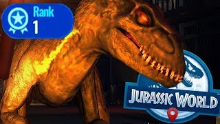 SO INTENSE! HOW TO GET TOP RANK - Jurassic World Alive Gameplay