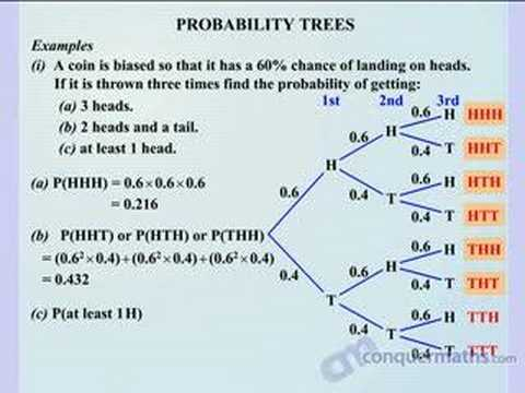 Probability Tree Video