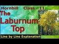 The Laburnum Top - LINE BY LINE EXPLANATION | Class 11 - Hornbill