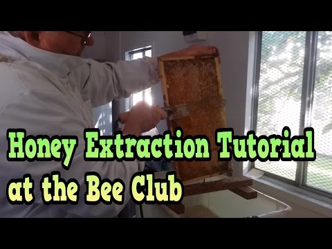 Honey Extraction Tutorial Day at the Bee Club October 2015