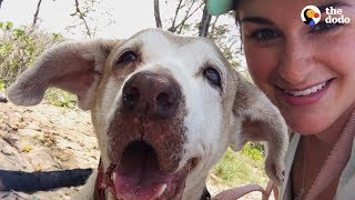 Dog Who Spent 7 Years In The Shelter Is SO Happy To Have A Family   The Dodo Faith = Restored