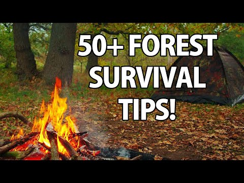survival - Here's a few handy tips and tricks that may just come in useful one day. ------------------------------------ Outdoor skills for wilderness survival, bushcra...